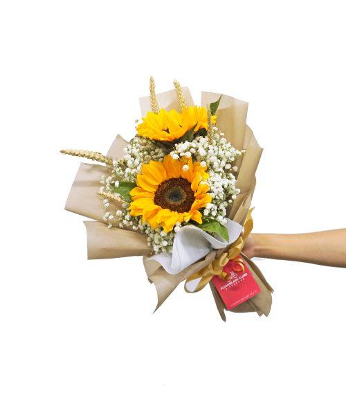 Graduation Flowers Sunflower Field