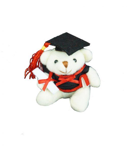 white-graduation-bear